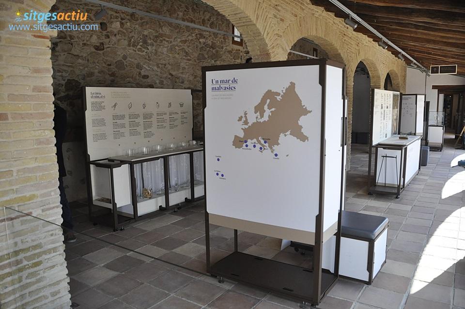 Centre d'Interpretació de la Malvasia